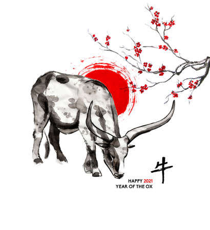 Sanga cow, a sun disk and a branch of cherry blossom, oriental ink wash painting, sumi-e. Hand painted greeting card Eastern new year. With Chinese hieroglyph `Ox` and text.