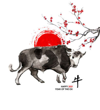 Walking bull, a sun disk and a branch of cherry blossom, oriental ink wash painting, sumi-e. Hand painted greeting card Eastern new year. With Chinese hieroglyph `Ox` and text.