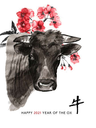 Ox sumi-e greeting card oriental new year. A bull head and a branch of cherry blossom, Eastern ink wash painting. With Chinese hieroglyph `Ox` and text.