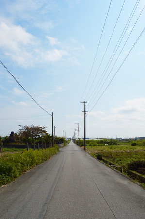 One road. 写真素材