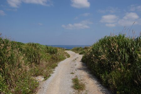 One road in the countryside of southern Okinawa