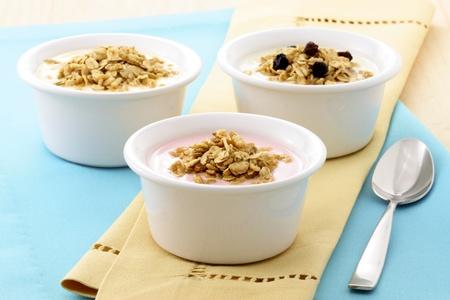 leckere und gesunde Joghurt und M?sli, mit vielen trockenen Fr?chten, N?ssen und K?rnern