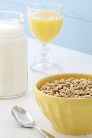 Delicious and nutritious lightly toasted honey, nuts and oats cereal with milk  Stock Photo - 17317354
