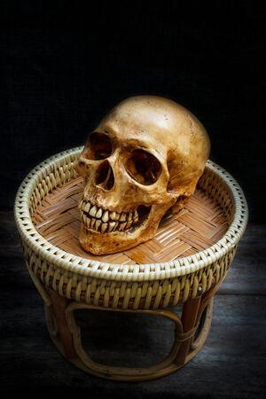 cadaver: Human skull on old wood background, halloween.