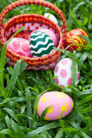 basket with painted eggs in the garden, easter eggs. photo