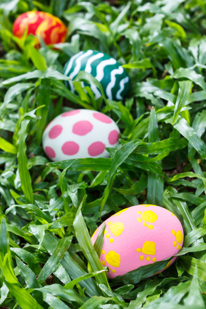 painted eggs in the garden, easter eggs. photo