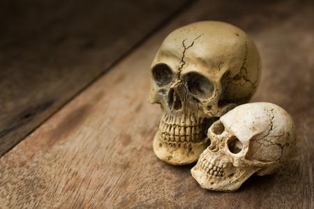 cadaver: human skull on old wood background, still life. Stock Photo