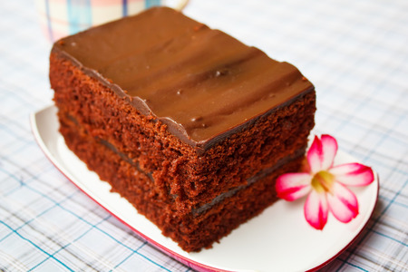 fudge: A piece of chocolate fudge cake. Stock Photo