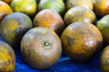citrus reticulata: Tangerine or Citrus reticulata blanco, in a markets Bangkok.