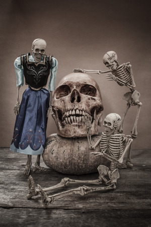 Still life with a human skull concept on the art. Stock Photo