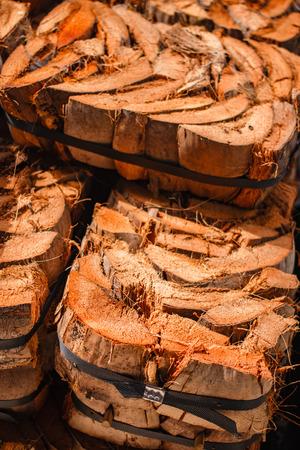 Coconut residue for plant a tree in flowers market. Reklamní fotografie