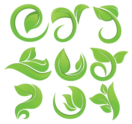 flower clip art: vector collection of green leaves and floral elements Illustration