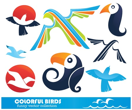 collection of colorful funny birds Vector