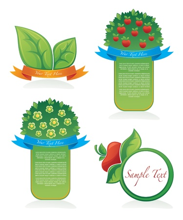 apple tree collection of organic stickers and labels Vector
