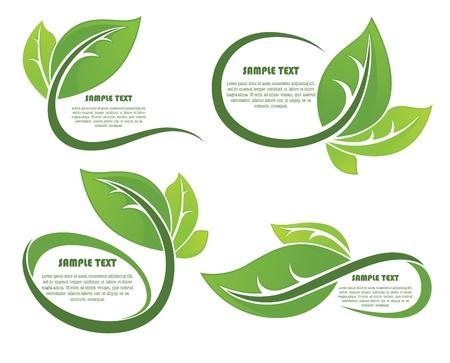green leaf: collection of leaf frames