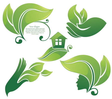 eco notice: collection of leaf frames ecological symbols and signs