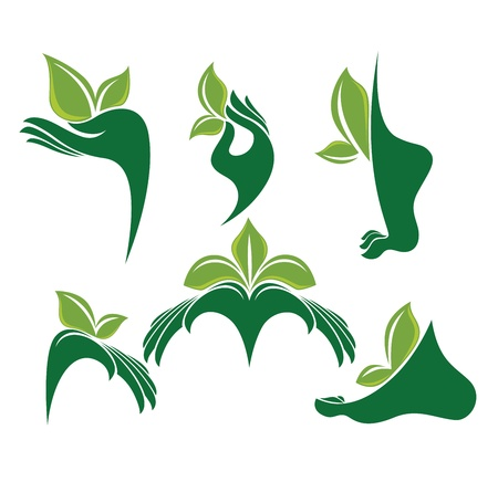 green hands, vector collection of eco and beauty symbols Vector