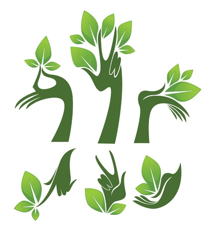 green hands, collection of eco and beauty symbols Stock Vector - 17309957