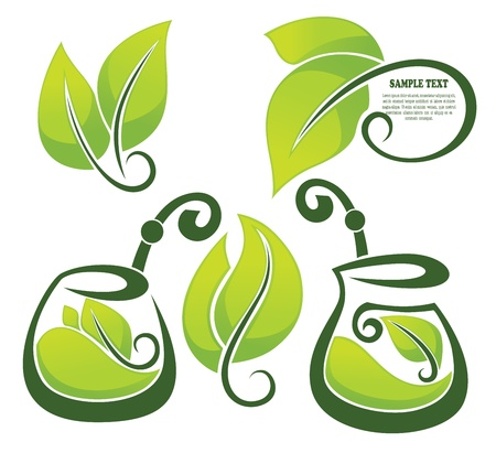 healthy herbal tea,  collection Vector
