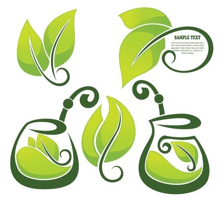 healthy herbal tea,  collection Stock Vector - 17389669