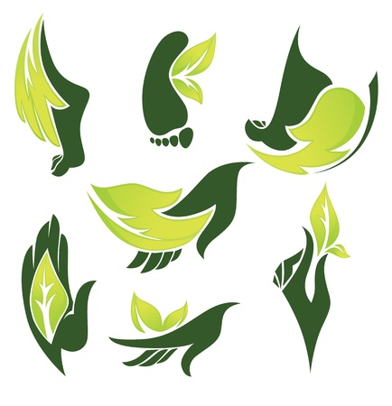 ciollection of nature symbols and signs Vector