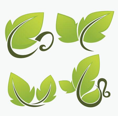 vector nature and organic symbols Vector