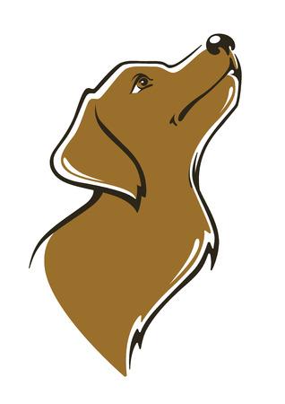 golden labrador image Ilustracja