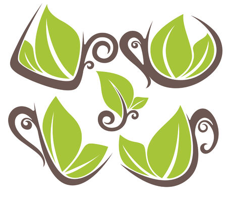 organic drinks: collection of natural tea, organic drinks and fresh green leaves Illustration