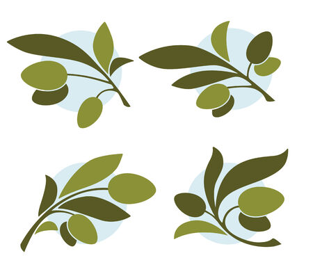olive branch: vector green illustration Illustration