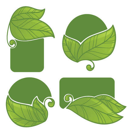 eco notice: vector ecology collection