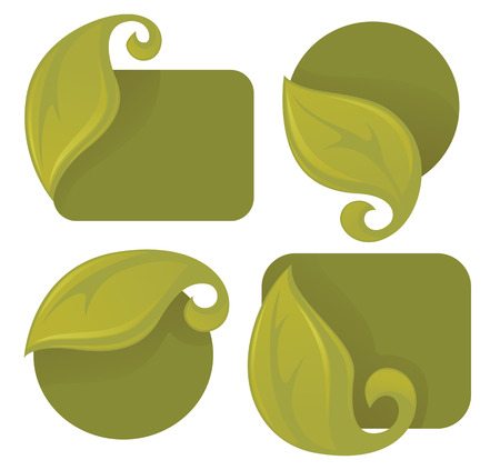vector collection of green leaf frames and stickers Vector