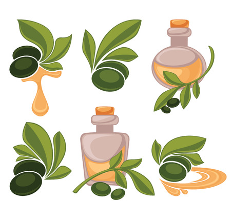 green olive: green olive and oil bottle, vector collection