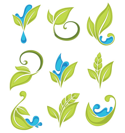 green plants: green leaves, plants and water drops, vector fresh collection