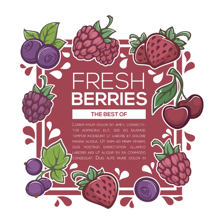 fresh juicy berries background template for you menu Illustration