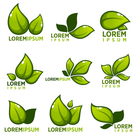 leaf: glossy leaves and plants empblems, icons and symbol for your ecological logo Illustration