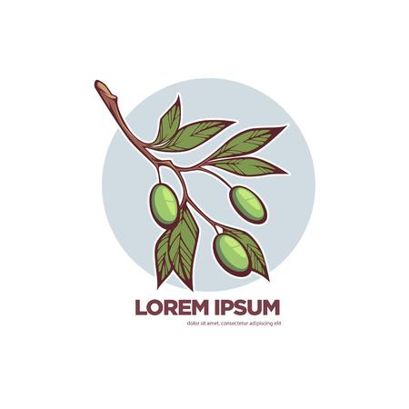 fresh olives, vector background template for your olive oil logo or label Illustration