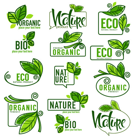 Large collection of doodle eco, bio, nature and organic leaves and plants emblems, elements, and  frames Иллюстрация