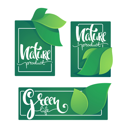 Nature Product And Greel Life Labels ans Stickers Template With Green Leaves and Hand Drawn Lettering Composition 向量圖像