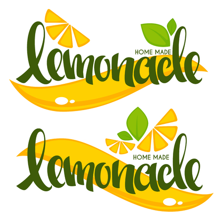 vector collection of bright and shine logo, stickers, emblems and banners for homemade citrus limonade