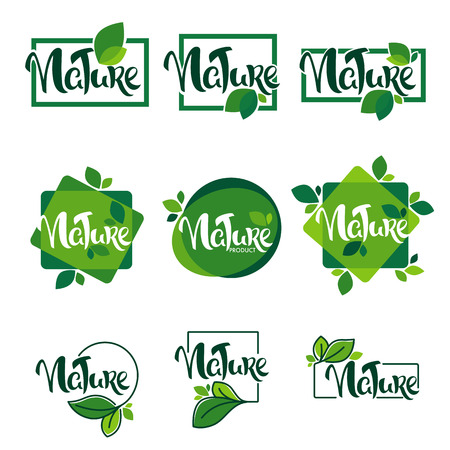 Collection of nature and organic leaves