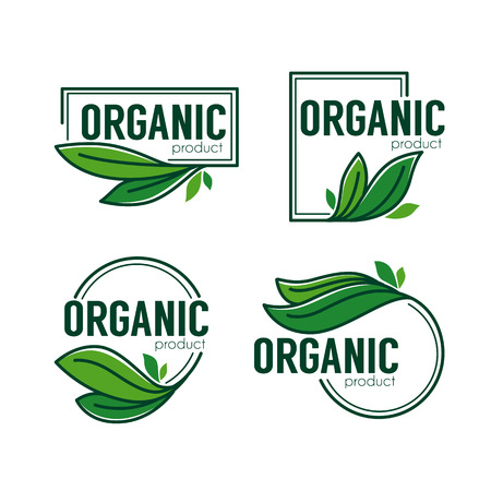 Nature  Product,  doodle organic green  leaves emblems, stickers,  frames and logo Illustration