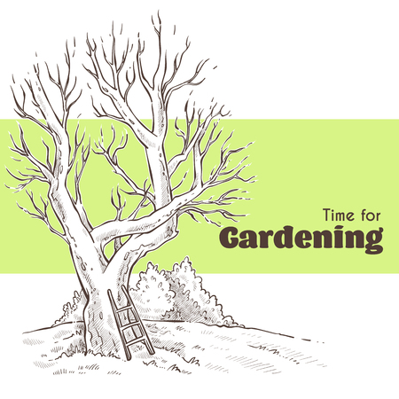 Time for Gardening han drawn sketch with image of spring tree and place for text