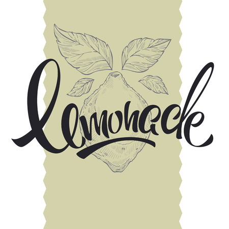 home made lemonade, retro sketching illustration with lettering composition