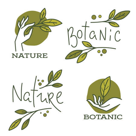 doodle organic leaves, hand and lettering composition for emblems. 矢量图像