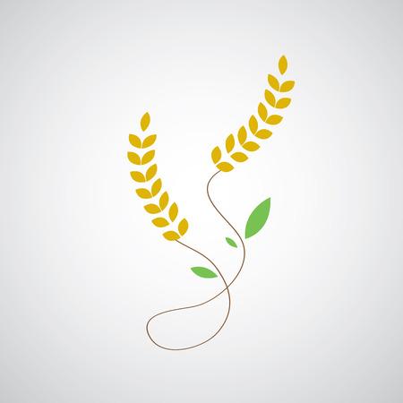 oat field: wheat symbol on gray background