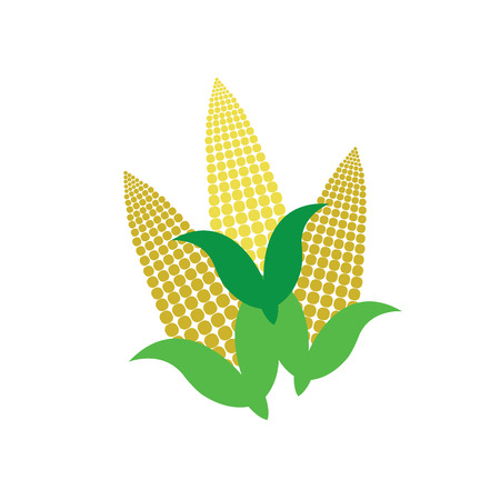 vector corn on the cob 矢量图像