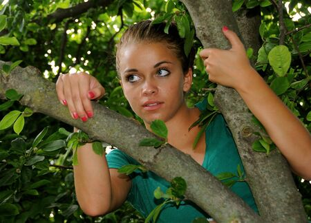 A teenage girl up in a tree. photo