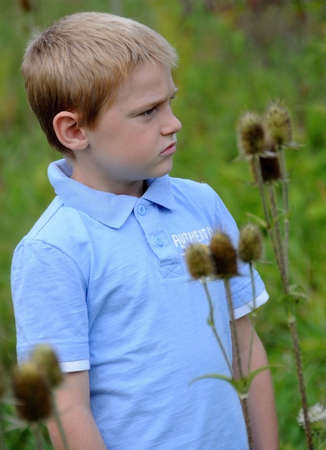 A cute young boy stands in a field in early morning on a summer day.