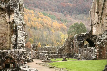 abbey: Detail of Tintern Abbey Monmouthshire