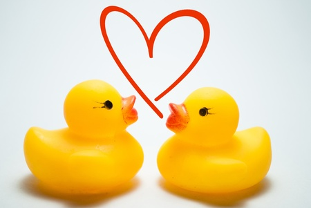 two ducklings and love symbol photo